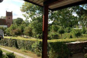 Æbletræer i BB Albertines have